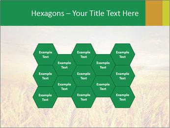0000096589 PowerPoint Template - Slide 44