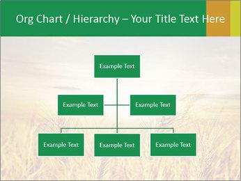 0000096589 PowerPoint Template - Slide 66
