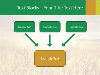 0000096589 PowerPoint Template - Slide 70