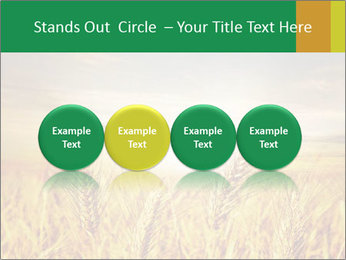 0000096589 PowerPoint Template - Slide 76