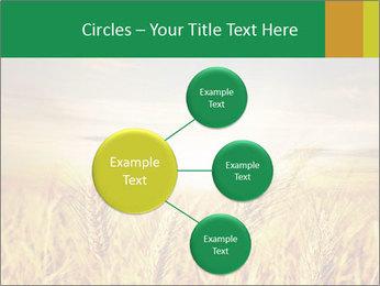 0000096589 PowerPoint Template - Slide 79