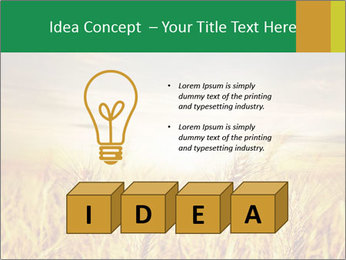 0000096589 PowerPoint Template - Slide 80