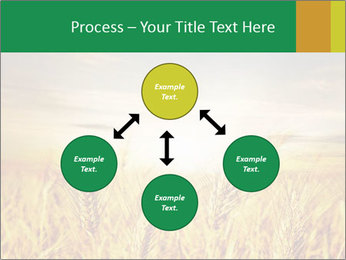 0000096589 PowerPoint Template - Slide 91