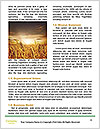 0000096589 Word Template - Page 4
