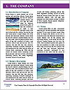 0000096593 Word Template - Page 3