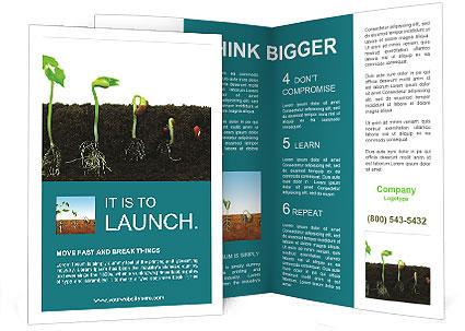 0000096594 Brochure Template