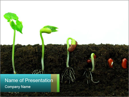 0000096594 PowerPoint Template