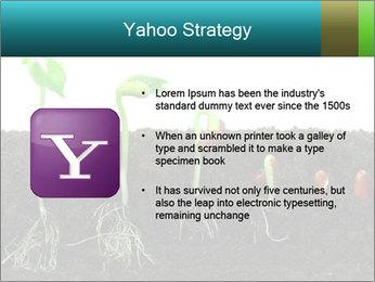 0000096594 PowerPoint Template - Slide 11