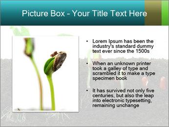 0000096594 PowerPoint Template - Slide 13