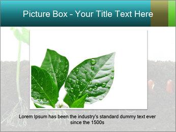 0000096594 PowerPoint Template - Slide 15