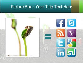 0000096594 PowerPoint Template - Slide 21