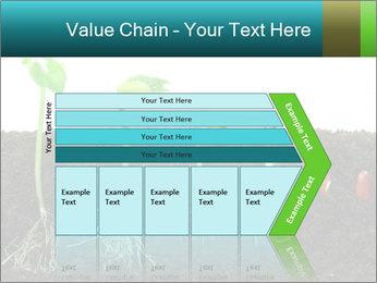 0000096594 PowerPoint Template - Slide 27
