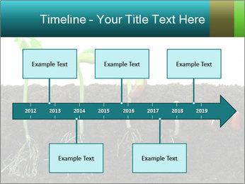 0000096594 PowerPoint Template - Slide 28
