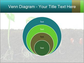 0000096594 PowerPoint Template - Slide 34