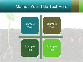 0000096594 PowerPoint Template - Slide 37