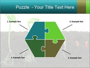 0000096594 PowerPoint Template - Slide 40