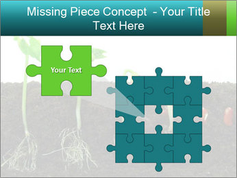 0000096594 PowerPoint Template - Slide 45