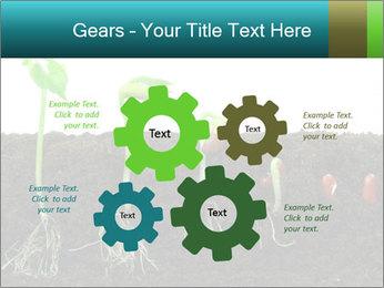0000096594 PowerPoint Template - Slide 47