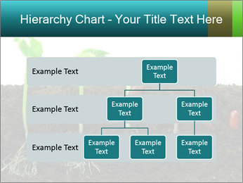0000096594 PowerPoint Template - Slide 67