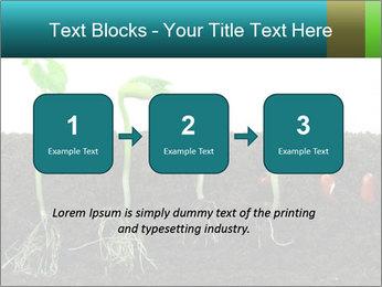 0000096594 PowerPoint Template - Slide 71