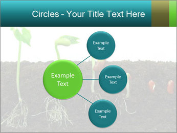 0000096594 PowerPoint Template - Slide 79