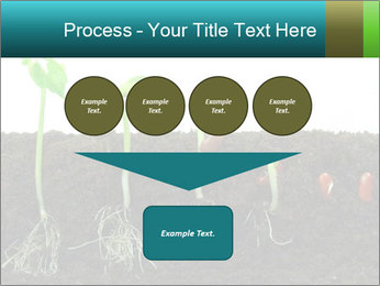 0000096594 PowerPoint Template - Slide 93