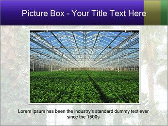 0000096595 PowerPoint Template - Slide 15