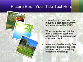 0000096595 PowerPoint Template - Slide 17