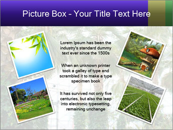 0000096595 PowerPoint Template - Slide 24