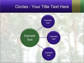 0000096595 PowerPoint Template - Slide 79