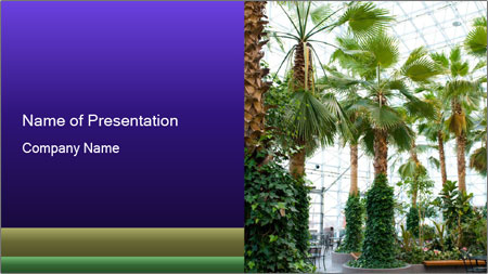 0000096595 PowerPoint Template