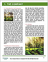 0000096598 Word Template - Page 3