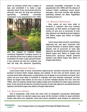 0000096598 Word Template - Page 4