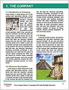 0000096600 Word Template - Page 3