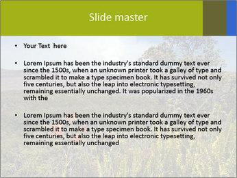 0000096601 PowerPoint Template - Slide 2