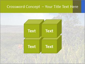 0000096601 PowerPoint Template - Slide 39