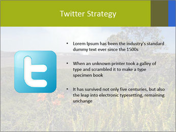 0000096601 PowerPoint Template - Slide 9