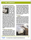 0000096601 Word Template - Page 3
