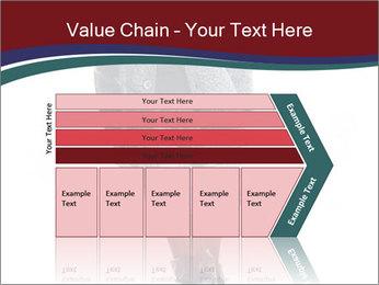 0000096602 PowerPoint Template - Slide 27