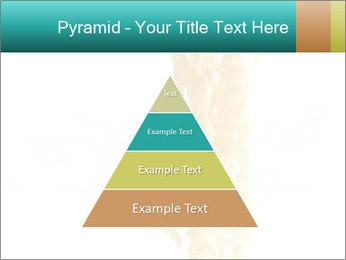 0000096603 PowerPoint Template - Slide 30