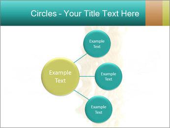 0000096603 PowerPoint Template - Slide 79