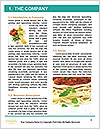 0000096603 Word Template - Page 3
