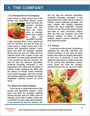 0000096605 Word Template - Page 3
