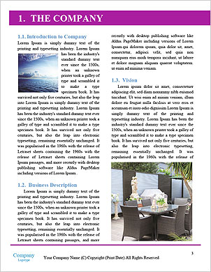 0000096606 Word Template - Page 3