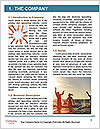 0000096607 Word Template - Page 3
