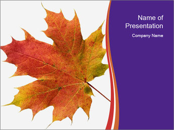 0000096608 PowerPoint Template - Slide 1