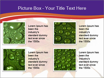 0000096608 PowerPoint Template - Slide 14
