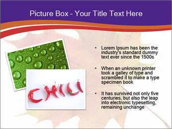 0000096608 PowerPoint Template - Slide 20