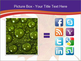 0000096608 PowerPoint Template - Slide 21
