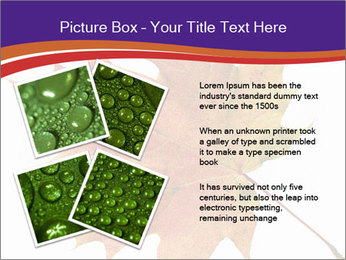 0000096608 PowerPoint Template - Slide 23